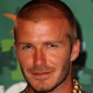 David Beckham The Alan Shearer Story