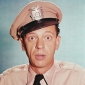 Host The Don Knotts Show