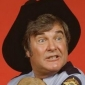 Sheriff Rosco P. Coltrane played by James Best