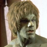 The Incredible Hulk played by Lou Ferrigno
