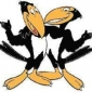Heckle The New Adventures of Mighty Mouse and Heckle & Jeckle
