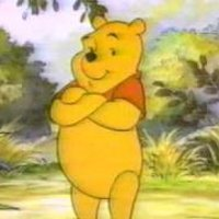 Winnie the Pooh The New Adventures of Winnie the Pooh