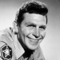 Andy Sawyer The New Andy Griffith Show