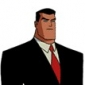 Bruce Wayne The New Batman Adventures