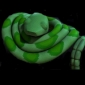 Green Snake played by