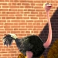 Ostrich played by