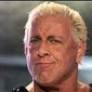 Ric Flair played by Ric Flair