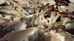 05x15 - Giant Crystal Cave