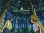 03x16 - Back to Nature, Back to Battle [a.k.a. Saga of the Devas (2)]