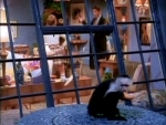 01x19 - The One Where The Monkey Gets Away
