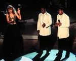 38x01 - The 38th Annual Grammy Awards