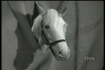 03x13 - Horse of a Different Color