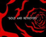 01x11 - Gold and Retrievers