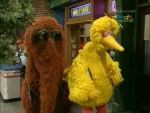 36x10 - Big Bird, Snuffy and Friends Hike