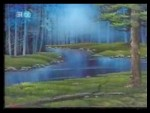 27x12 - Forest River