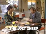 02x06 - The Lost Sheep