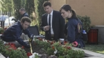 06x20 - The Pinocchio in the Planter