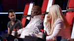 03x06 - The Blind Auditions, Part 6