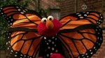 42x12 - Elmo and the Monarch Butterfly