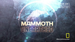 43x41 - Mammoths Unearthed