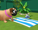 03x21 - Just One of the Puppies / Pet Picnic