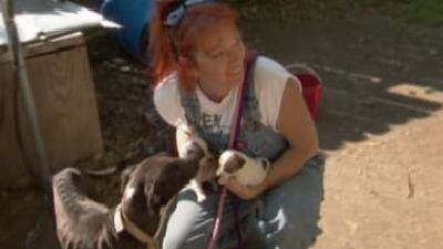 Pit Bulls and Parolees - 03x05 Southern Uprising