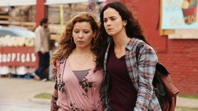 Queen of the South Season 1 - ShareTV