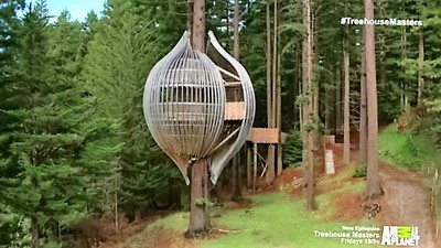 treehouse masters alex meyer animal planet treehouse masters 06x07 ultimate treehouses 6x07 sharetv