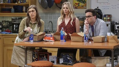 The Big Bang Theory - 10x09 The Geology Elevation