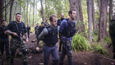 "Hawaii Five-0 (2010) - 07x21 Ua malo'o ka wai  ""The Water is Dried Up"""