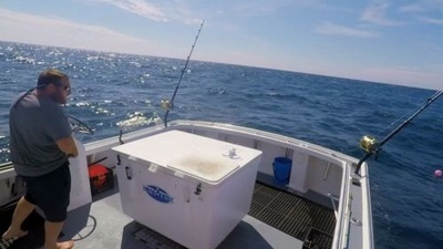 Wicked Tuna - 08x11 Thick as Thieves