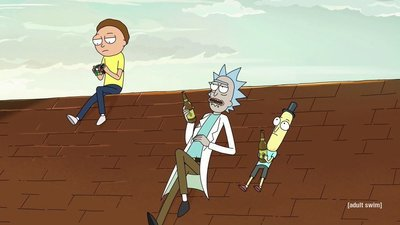 Rick and Morty - 04x03 One Crew Over The Crewcoo's Morty