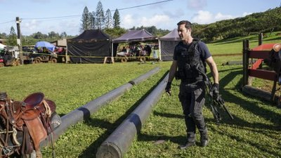 Hawaii Five-0 (2010) - 10x19 E ho'i na keiki oki uaua o na pali (Home go the very tough lads of the hills)