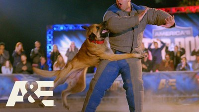 America's Top Dog - 01x11 It Ain't Over Until There's a Top Dog Screenshot