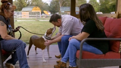 Pit Bulls and Parolees - 15x11 Not Giving Up