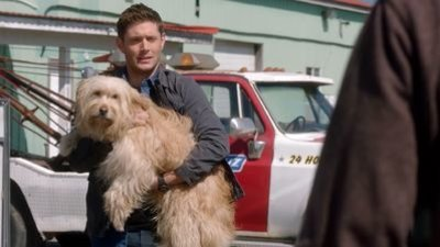 Supernatural - 15x19 Inherit the Earth