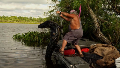 Swamp People - 12x03 Battle of the Baits