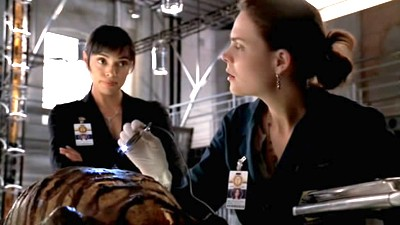 Bones - 02x10 The Headless Witch in the Woods