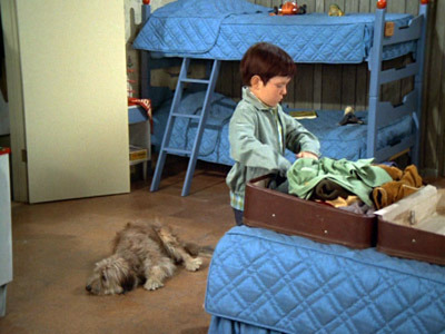 The Brady Bunch - 01x10 Every Boy Does It Once