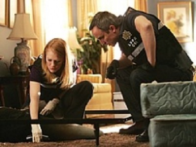 CSI: Crime Scene Investigation - 08x15 The Theory of Everything
