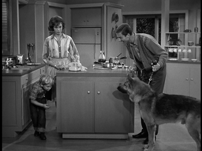 The Dick Van Dyke Show - 01x09 The Unwelcome Houseguest