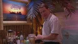Malcolm in the Middle - 06x13 Tiki Lounge