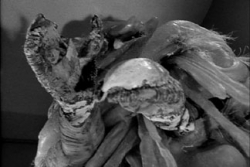 The Outer Limits (1963) - 01x15 The Mice