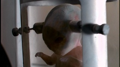 The X-Files - 01x23 The Erlenmeyer Flask
