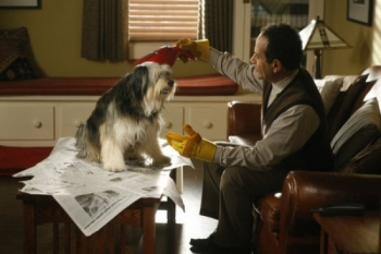 Monk - 08x11 Mr. Monk and the Dog