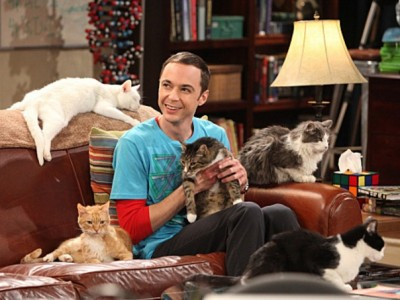 The Big Bang Theory - 04x03 The Zazzy Substitution
