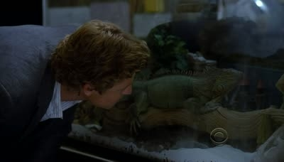 The Mentalist - 03x12 Bloodhounds