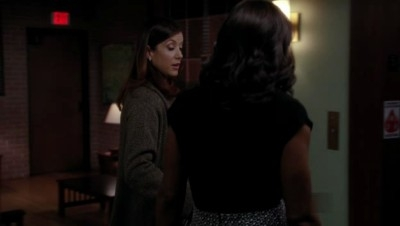 Private Practice - 04x16 Love And Lies