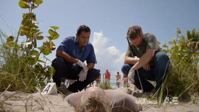 The Glades - 02x11 Beached