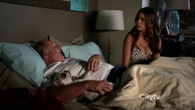 Modern Family - 03x03 Phil On Wire